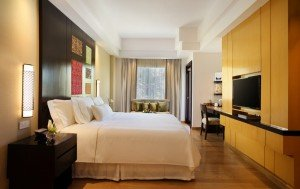 Premium Room - Kingsize bed (Medium)